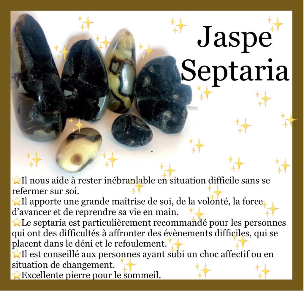 FOCUS sur… le Jaspe Septaria