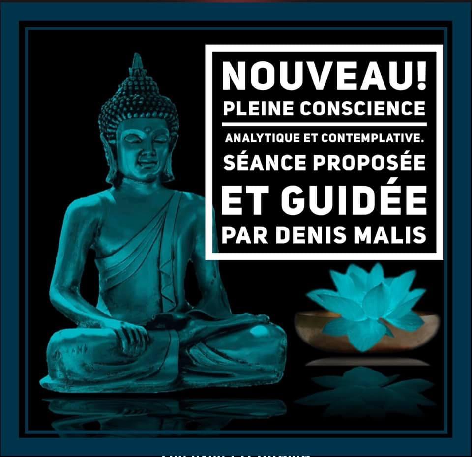 Méditation en Pleine Conscience, analytique et contemplative